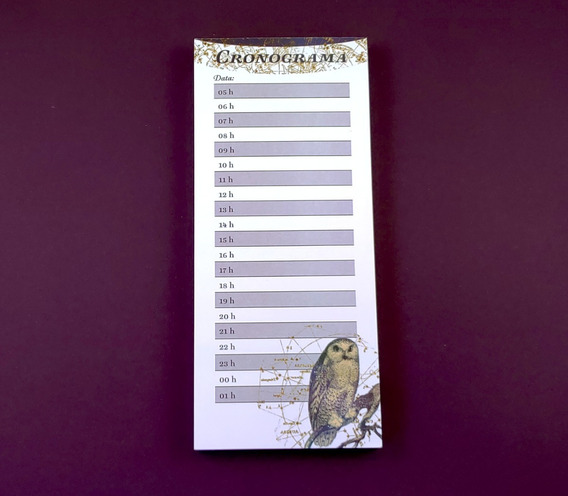 Planner De Mesa Cronograma Diário