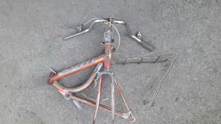 Bici Rod 20 Plegable Tipo Aurorita Minigala