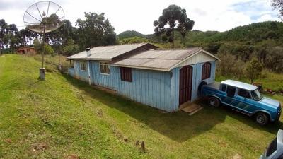 Chácara Com 33.282m², Zona Rural, Tijucas Do Sul. - Codigo: Ch0002 - Ch0002