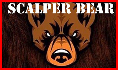 Scalper Bear 2020 Curso Completo