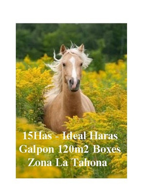 Haras 15ha Zona Countries Gran Galpon Boxes Casa