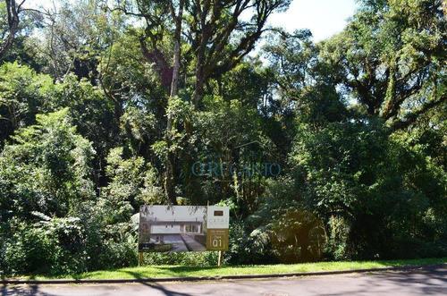 Terreno À Venda, 1168 M² Por R$ 430.000,00 - O Bosque - Gramado/rs - Te0362
