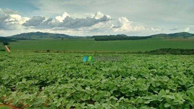Fazenda Para Lavoura - 1694 Ha - Região Carmo Do Rio Claro (mg) - Codigo: Fa0119 - Fa0119