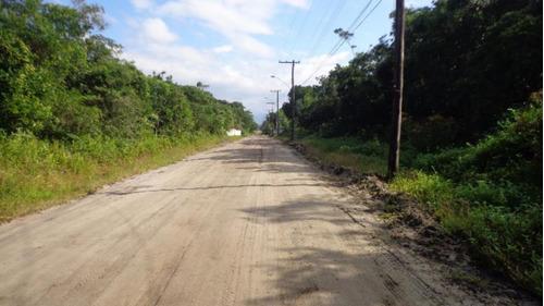 Chácara Em Formação E Com Poço Em Itanhaém - 2905 | Npc