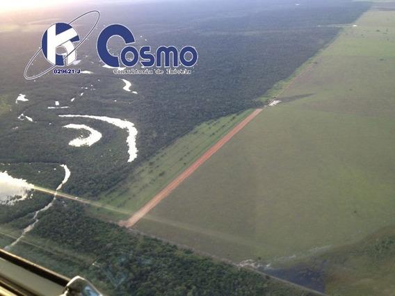Fazenda, A Venda Em Porto Alegre Do Norte - Mt - Fa00095 - 33751886