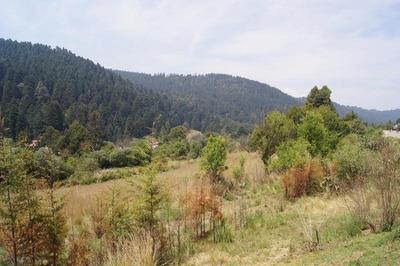 Cañada De Alferez, Ler. Edo. Mex. Hermoso Terreno En Zona Boscosa Ideal Para Desarrollo Habitacional.