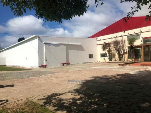 Local Industrial Depósito Logístico Disponible Flor Maroñas