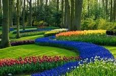 jardineriapaisajismomantenimientofumigacionpodasriego