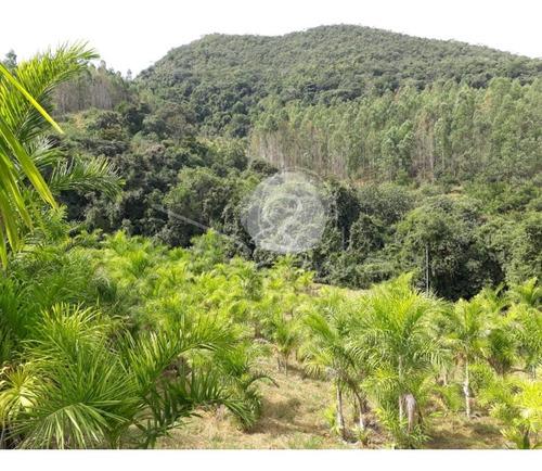 Imagem 1 de 18 de Sítio Para Venda Em Jacutinga Mg  -  Imobiliária Em Campinas - St00004 - 69577073