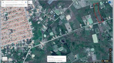 Terreno De 10.000 M² (50m X 200m), Plano Ideal Para Açudes