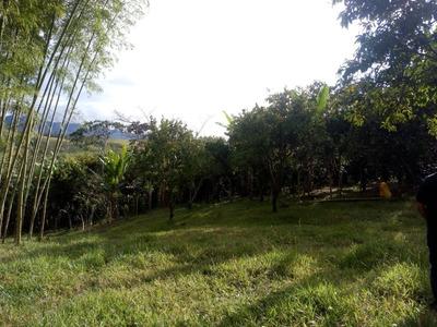 Finca Ganadero Y Agrícola En Vijes Valle Del Cauca
