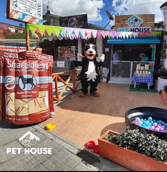 Se Vende Tienda De Mascotas Por Motivo De Viaje