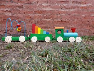 Tren Didáctico 3 Cuerpos
