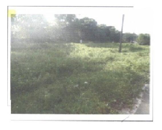Rodovia Augusto Meira Filho Km 17 Rod Belem/mosqueiro. Bairro Tauarie, Centro, Santa Bárbara Do Pará - 262280