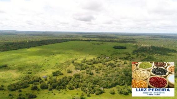Fazenda A Venda Em Lagoa Da Confusão - To De 16.663 Hectares (agricultura) - 1344