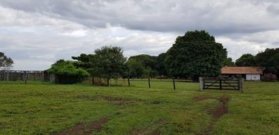 Sitio A Venda Em Lagoa Da Confusão(pecuária) - 770