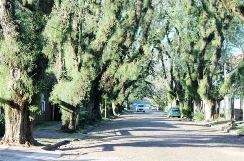 Casa Em Ipanema Com 3 Dormitórios - Lu264557