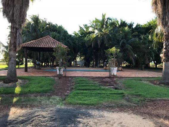 Fazenda Para Venda Em Nova Alvorada Do Sul, Centro - 1095