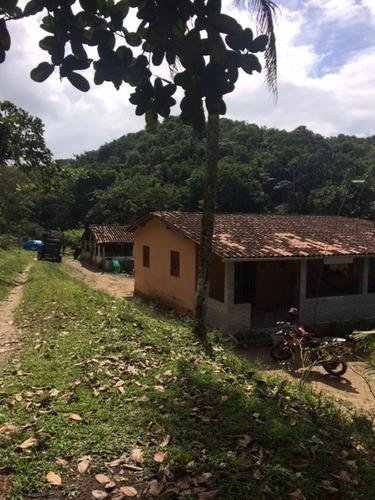 Imagem 1 de 15 de Mais Qualidade De Vida P/você Granja 2,5hec C/riacho Perene Na Guabiraba, Aceito Carro - Ch00026 - 68728098