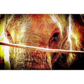 Poster Fotográfico Outro Lado 40x60 Plinio Bocchino