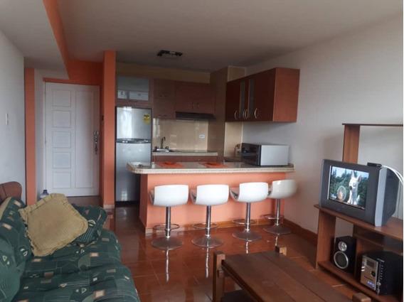 Apartamento En Alquiler, 1 Habitacion, 1 Baño-