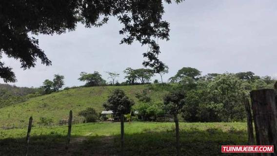 Fincas En Venta El Totumo - Manzanita Simon Planas
