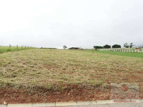 Terreno À Venda, 3000 M² Por R$ 130.000 - Dos Orgãos - Bofete/sp - Te1130