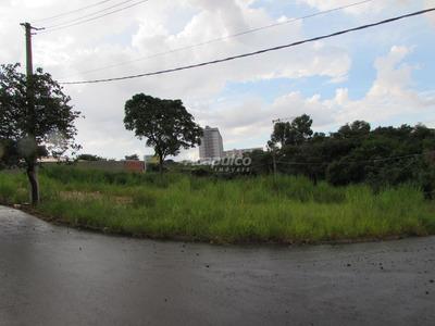 Terreno À Venda/aluguel, Americana/sp - 9052