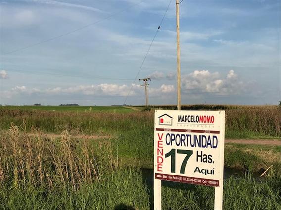 Oportunidad 17 Has Agrícolas S/asfalto La Violeta Buenos Air