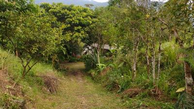 Sítio Em Patrimonio, Paraty Rj 12000m2