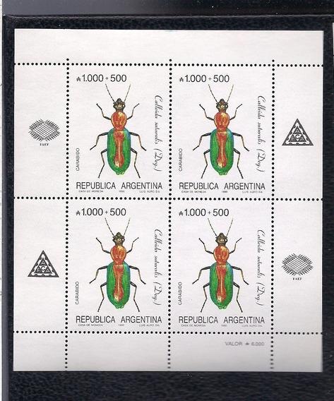 Argentina: Bloques Tema Insectos