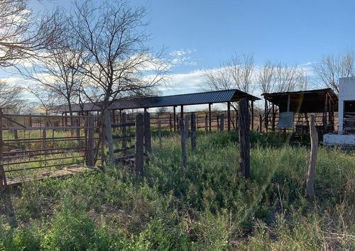 Rancho En Coahuila, Sabinas