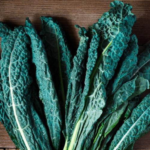 Imagen 1 de 1 de Semillas De Kale Toscano Para Huerta En Casa