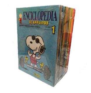 Enciclopedia De Carlitos 15 Vols Junior Grijalbo Mondadori