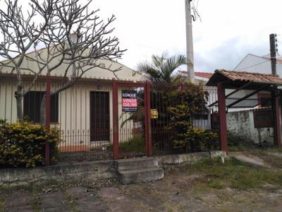 Terreno Em Tristeza - Lu261031