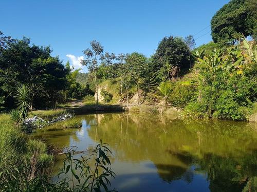 Belo Sito Com Lagoa Com Peixes