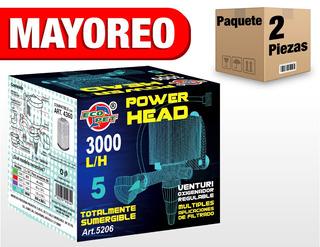 2 Cabezas De Poder 3000 L /h 200-300 Art147 5206