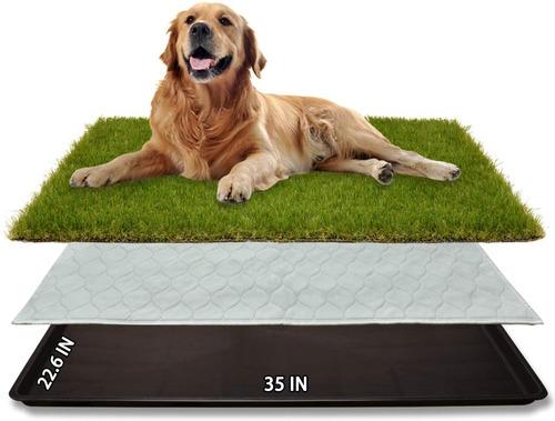 Tapete Entrenamiento Lavable Mascotas Perros Grande Potty