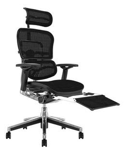 Cadeira Ergonômica Ergoman V2 Elite Com Leg Rest