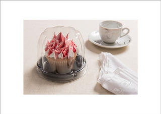 Embalagem Cupcake Mini Panetone 100gr Galvanotek G690 C/300
