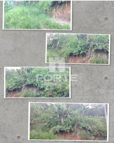 Imagem 1 de 1 de Terreno Zona Rural No Bairro Vila Moraes Em Mogi Das Cruzes. Imobiliárias De Mogi Das Cruzes. - Te00026 - 69742994