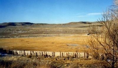 Campo Ganadero 20000 Ha- Prov. Santa Cruz- Las Heras-
