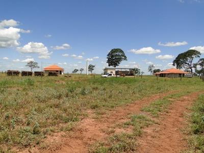 Fazenda A Venda Em Chapadão Do Sul - Ms (pecuária) - 1073