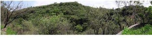 Se Venden 5 Ffracciones De Terreno, Morelos