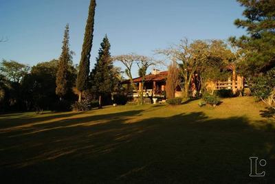 Casa Em Vila Nova Com 1 Dormitório - Lu272337