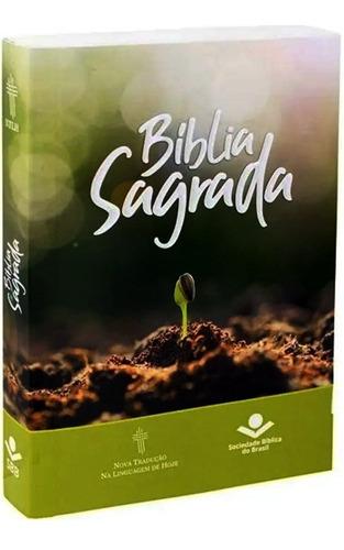 Bíblia Sagrada Ntlh - Ideal Para Evangelização