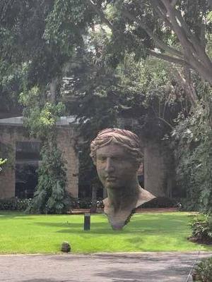 Departamento En Renta En Central Park Zapopan Jal. Colonia Vallarta San Jorge