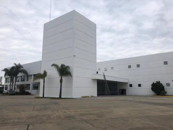 Galpones, Depósitos O Edificios Ind. Alquiler Troncos Del Talar