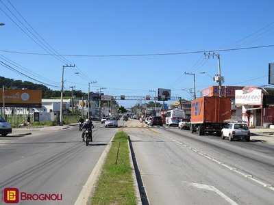 Loja Com Casa No Rio Tavares! - 31375