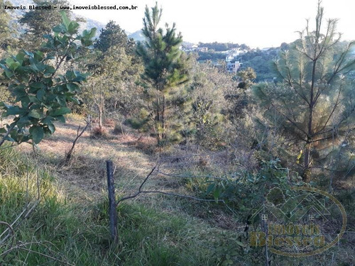 Terreno Para Venda Em Atibaia, San Fernando Valley - 0011_1-865171